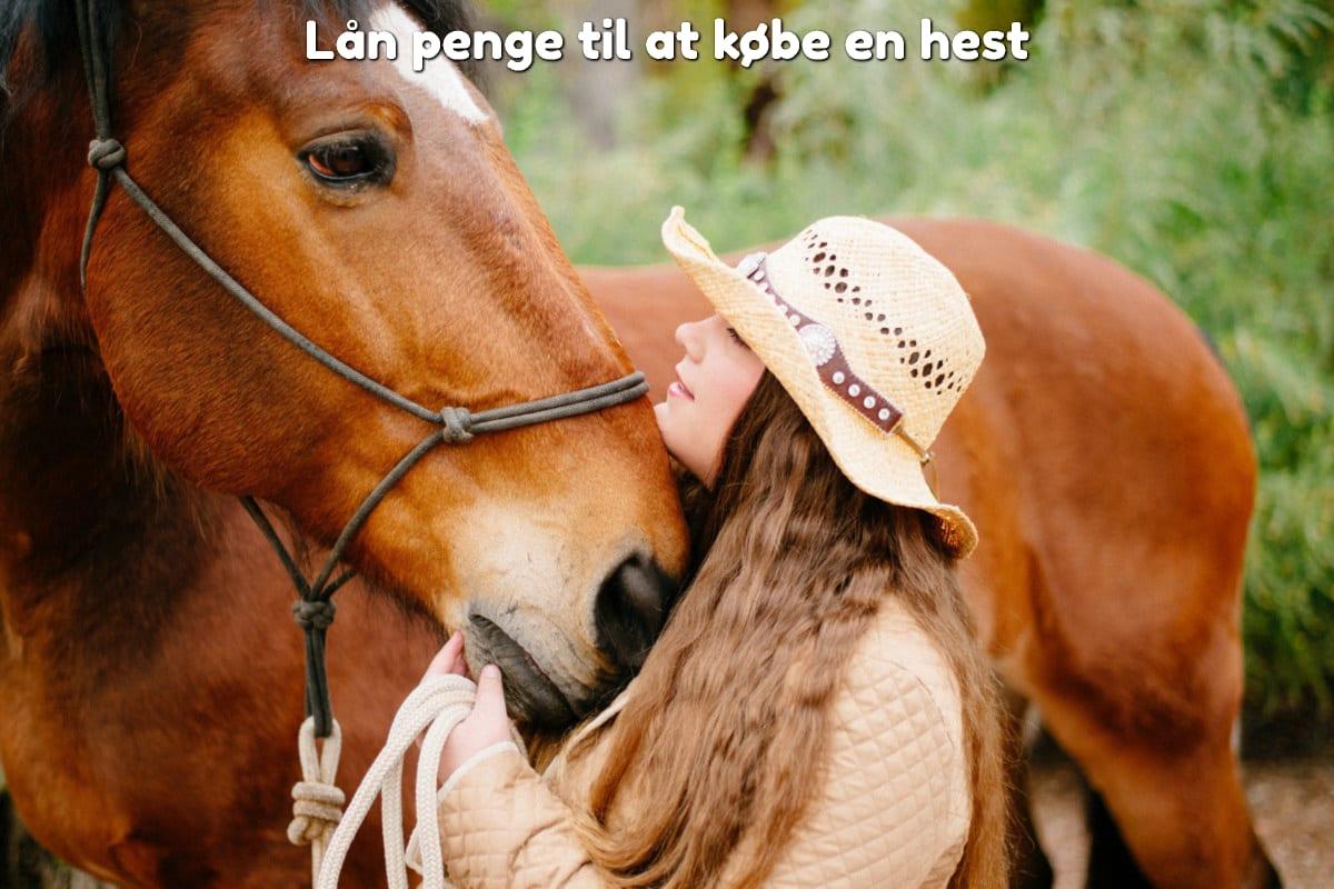 Lån penge til at købe en hest