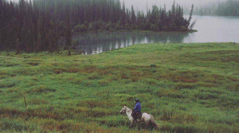 Kom i kontakt med omverdenen - selv når du er ude og ride